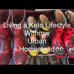 Vlog: MORINGA Harvesting + Drying + Making Capsules | Keto Old Bay SHRIMP Recipe
